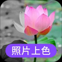 照片上色appv1.0.0安卓版