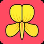 金雀花v7.1.0 安卓版
