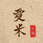 爱米小说v1.0.2 安卓版