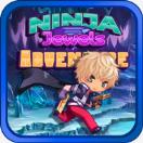 忍者宝石冒险Ninja Jewels Adventure手游v1.2安卓版