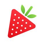 草莓生活时间管理v1.0.1 安卓版