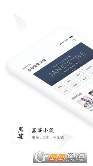 黑莓小说app(清爽阅读) V1.0.1安卓版