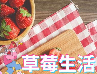 草莓生活下载_草莓生活安卓版/苹果版/草莓生活app合集下载