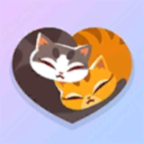 My Cat Club