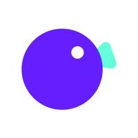 拍鸭短视频app