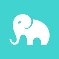 大象得美(服装设计)