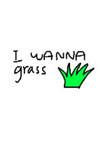 I wanna grass简体中文硬盘版